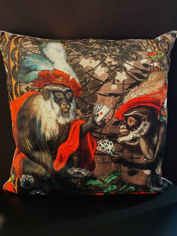 S coussin2017